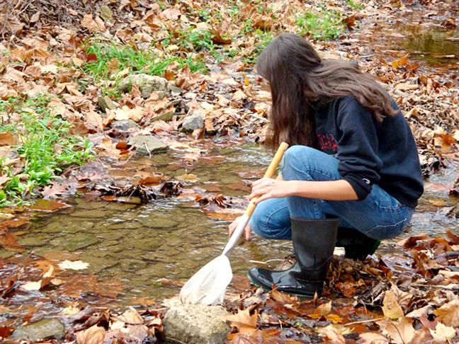 looking at creek