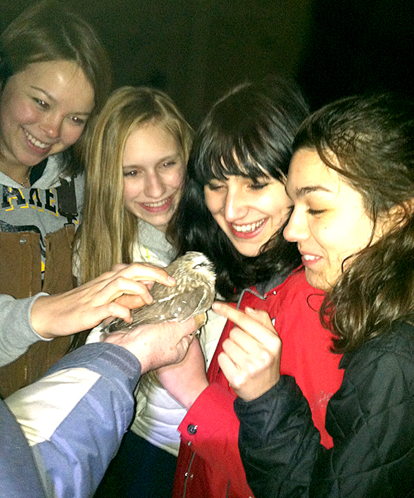 upclose girls and owl